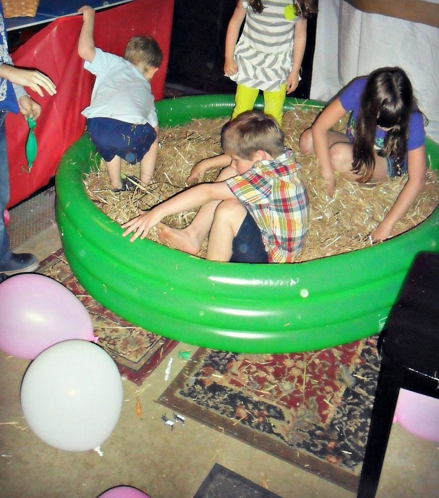 Farm Birthday Party Ideas - look for eggs