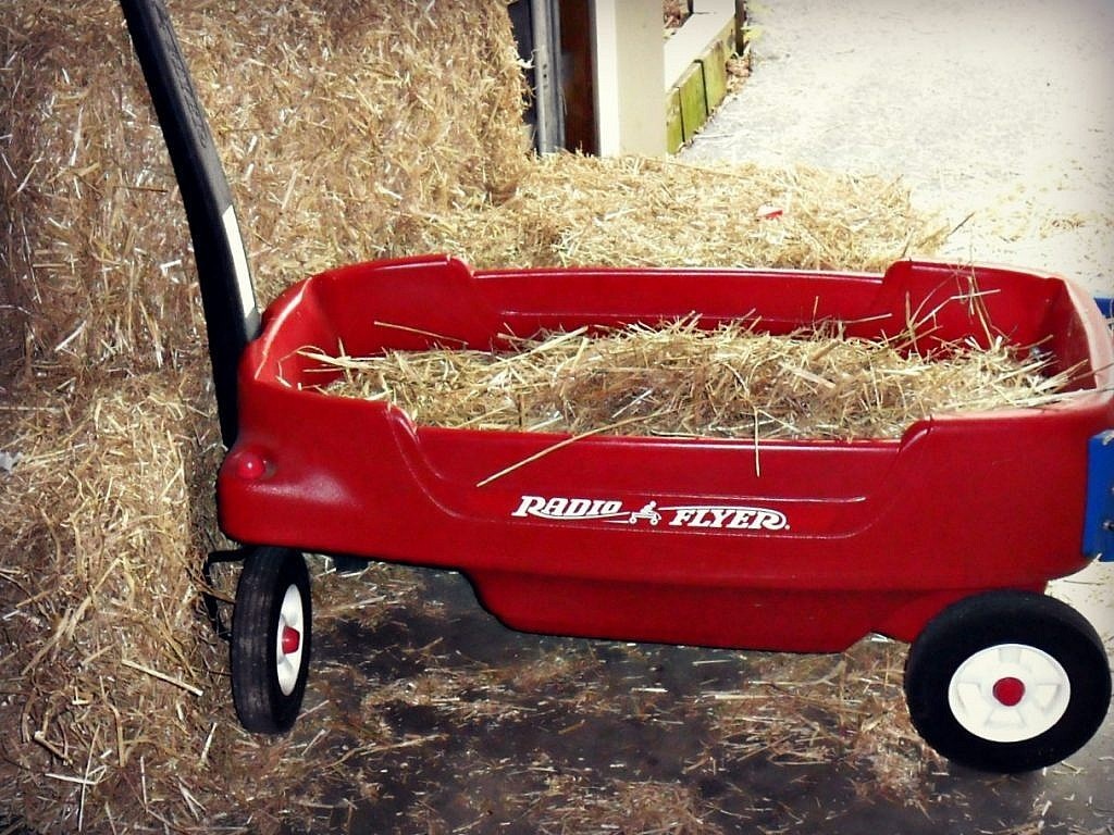 Farm Birthday Party Ideas - mini hayride
