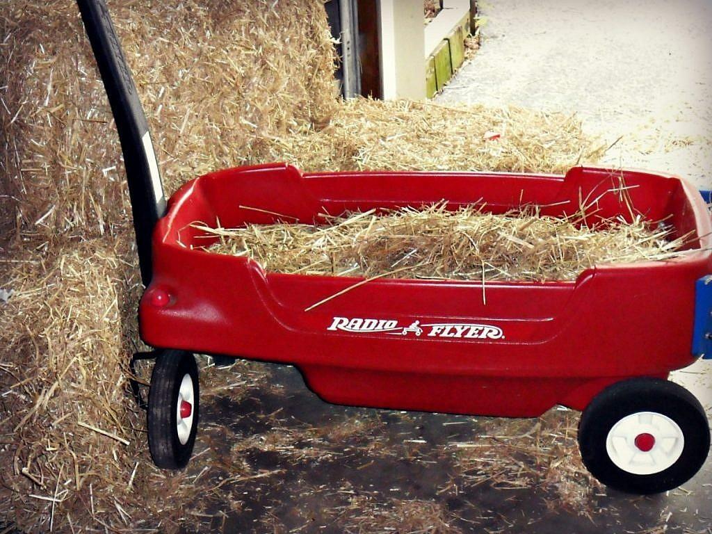 Farm Birthday Party Ideas - mini hayride