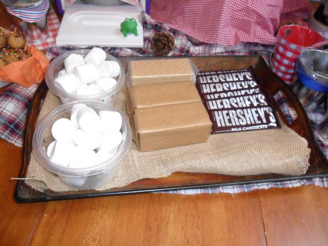 Camping Party Smore Snacks