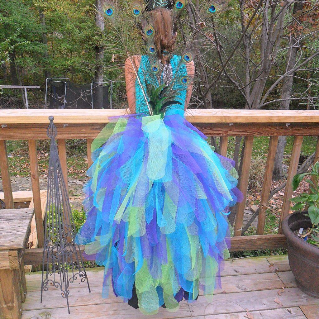 feature - peacock costume