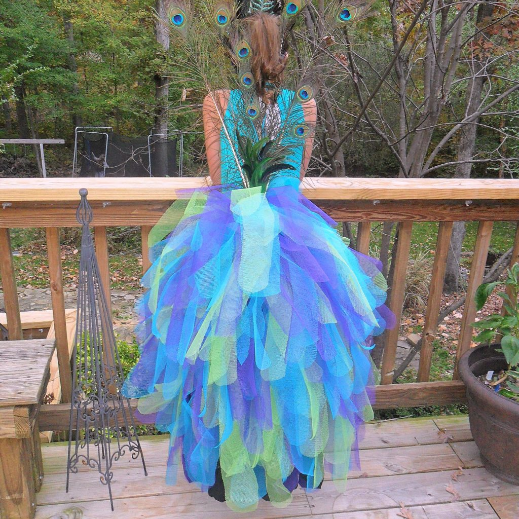 feature - peacock costume