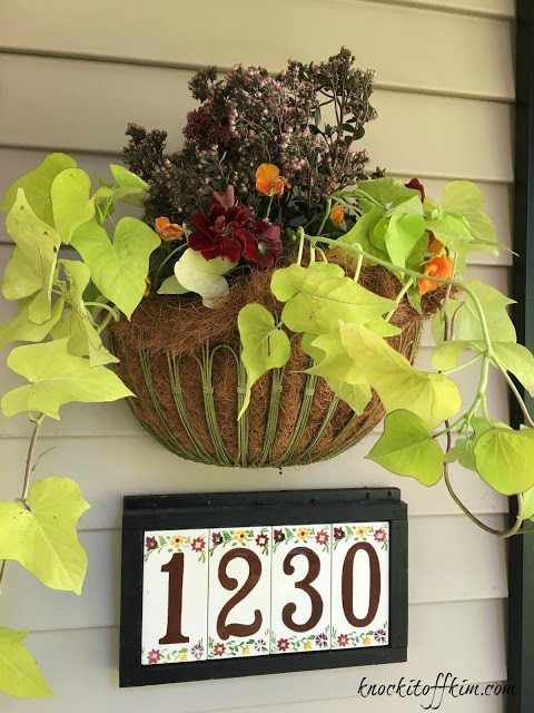 Fall Plants For Hanging Baskets