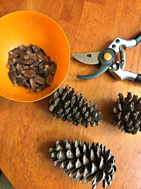 Pinecone Christmas Ornaments - 3