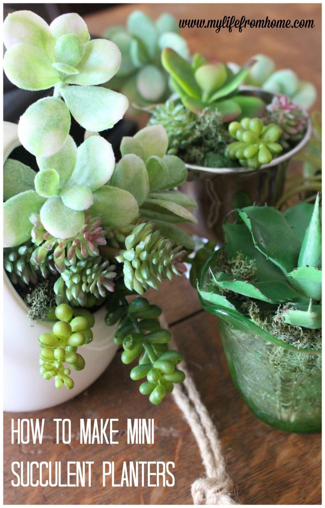 How To Make Mini Succulent Planters How To Make Succulents