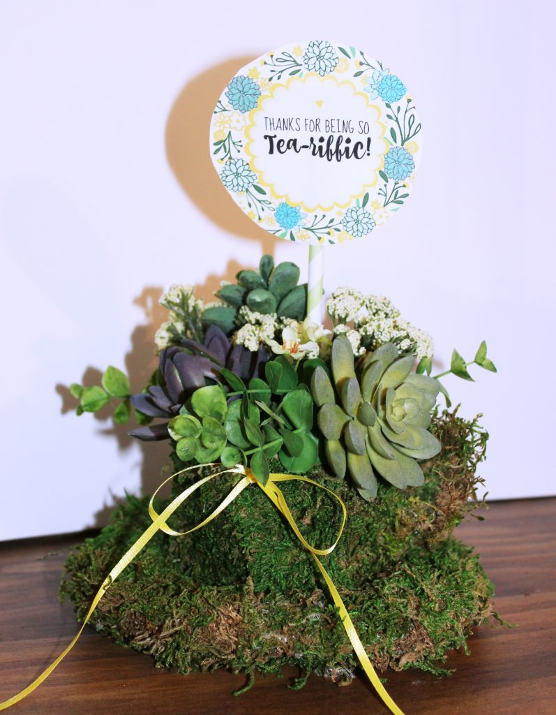 Teacup Succulent Planter