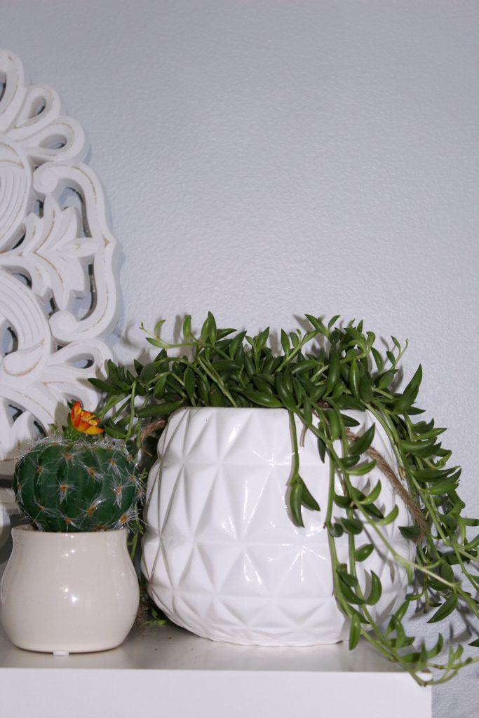 boho bedroom - succulents