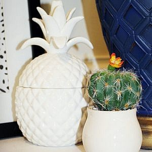 pineapple home decor_final
