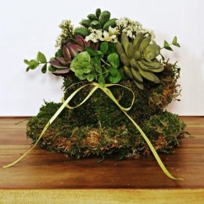 crafts and diy projects - succulent planter mothers day